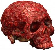 Decorazione Halloween: cranio putrefatto insanguinato