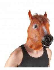 Maschera da cavallo per adulto