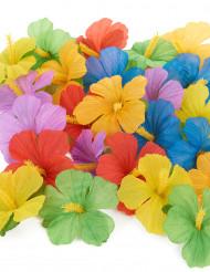 Confezione da 24 fiori hawaiani di stoffa