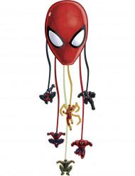 Pentolaccia Spiderman Web Warriors™