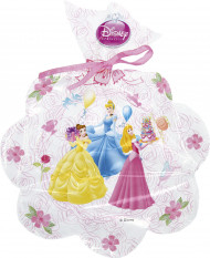 6 Sacchetti per caramelle Disney princess and Palace Pets™