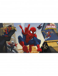 Decorazione murale Spiderman™