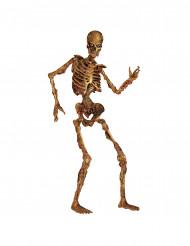 Decorazione scheletro articolato per Halloween