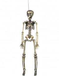 Scheletro di Halloween dorato da appendere decorazione di Halloween