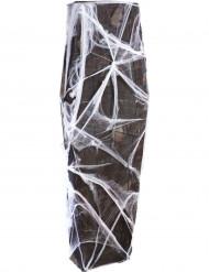 Decorazione di Halloween: sarcofago con ragnatele
