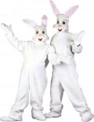 Costume mascotte coniglio adulto