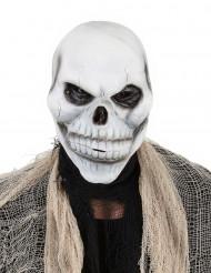 Maschera teschio di scheletro adulto halloween