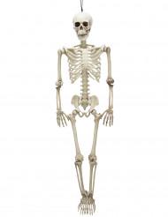 Scheletro posizionabile 90 cm Halloween