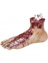 Decorazione Halloween: piede tagliato cm 25