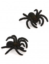 2 ragni neri Halloween