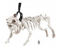 Scheletro di cane per Halloween