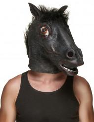 Maschera Cavallo nero in lattice per adulto