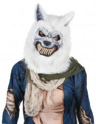 Maschera lupo bianco
