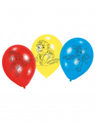 6 palloncini di lattice Paw patrol™