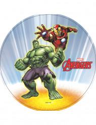 Disco ostia Hulk e Iron Man Avengers™