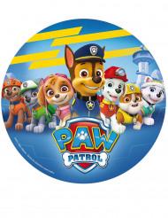 Ostia decorativa per Paw patrol™