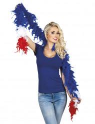 Boa tifoso Francia