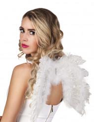 Ali angelo bianche 48 x 35 cm adulto
