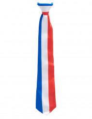 Image of Cravatta tricolore Francia