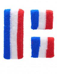 Fascia e polsiere di spugna della Francia