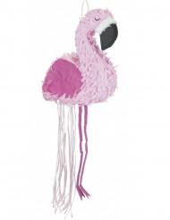 Pentolaccia fenicottero rosa
