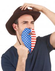 Barba bandiera USA