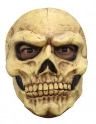 Maschera scheletro adulto halloween