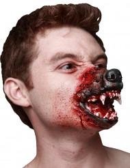 Muso da lupo mannaro insanguinato - Halloween