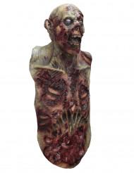 Maschera integrale e busto da zombie per adulto