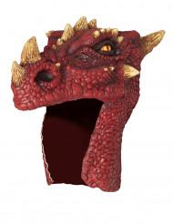 Casco da dragone rosso adulto