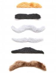 Confezione di sei baffi adesivi adulto