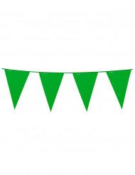 Ghirlanda di bandierine verdi