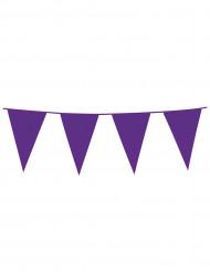 Ghirlanda con bandierine viola