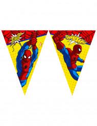 Ghirlanda di bandierine Ultimate Spiderman Power™