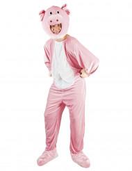 Costume mascotte maiale per adulto