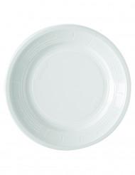 50 piatti bianchi