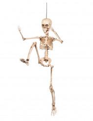 Decorazione di Halloween: scheletro articolato