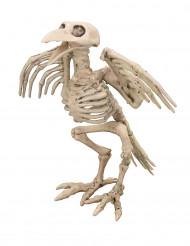 Decorazione scheletro di corvo per halloween