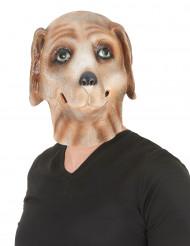 Maschera cane in lattice adulto