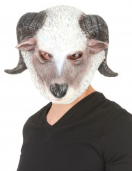 Maschera montone in lattice adulto