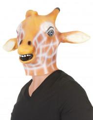Maschera giraffa in lattice per adulto