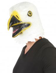 Maschera aquila lattice adulti