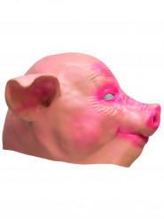 Maschera maialino lattice adulto