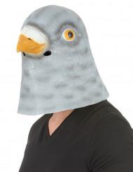 Maschera piccione in lattice per adulto