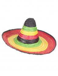 Sombrero messicano multicolore adulto