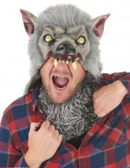Maschera da lupo mannaro in lattice per adulto