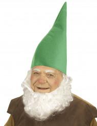 Cappello da nano verde per adulto