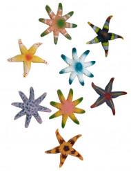Decorazione stella di mare