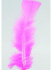 100 piccole piume rosa