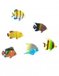 Decorazione 6 pesci tropicali 6 cm